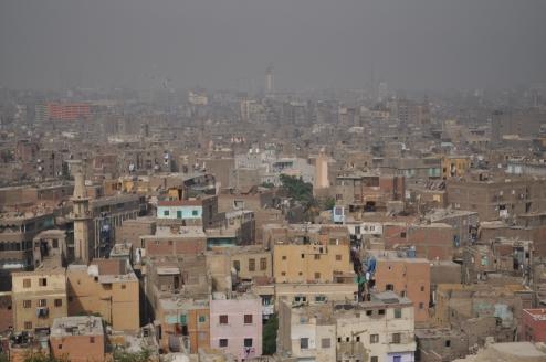 Grey Egypt